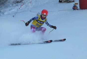 Veľká cena Slovenska v alpských disciplínach