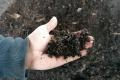 Nitra ponúka majiteľom rodinných domov záhradné kompostéry
