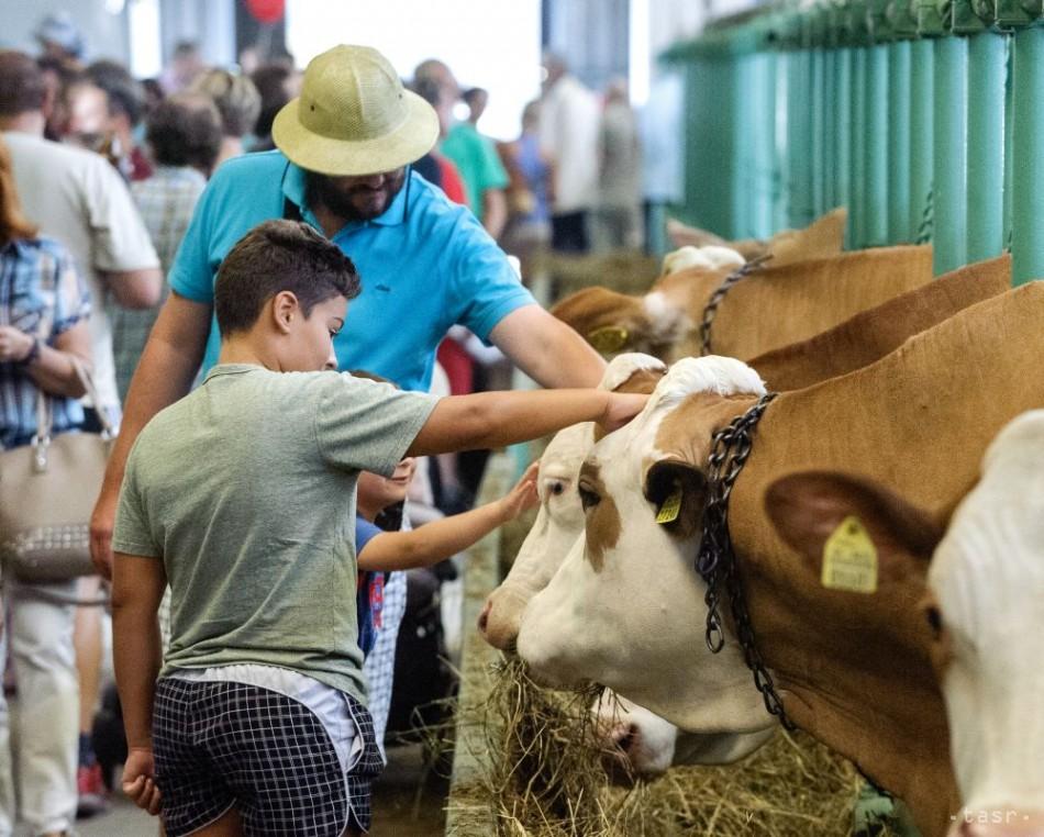 Na Agrokomplexe sa zišli milovníci domácich i hospodárskych zvierat 89b4f7f5d22