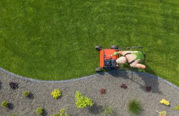 Najlepší pomocníci do záhrady