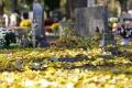 Mesto Vrbové potrebuje nový cintorín, chce zameniť pozemky