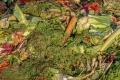 Kompostovať sa dá aj v paneláku, bioodpad spracujú dážďovky