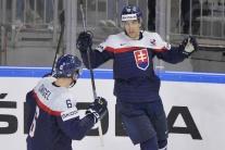 zápas Švédsko-Slovensko