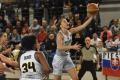 Piešťanské Čajky prehrali v rámci pohára FIBA v Toruni o 18 bodov