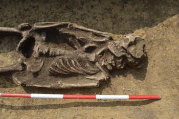 Archeológovia našli hroby z obdobia Veľkej Moravy