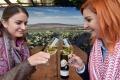 Tokajské pivnice s ochutnávkou vín prilákali stovky záujemcov