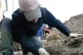 Archeologické práce v Bratislave odhalili avarské pohrebisko