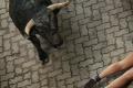 Muža z Gelnice pravdepodobne ušliapali býky