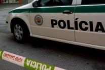 Polícia obvinila muža, ktorý sa pokúšal ukradnúť veci v mikrovlnke
